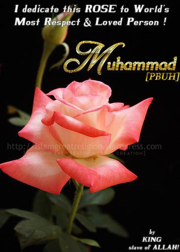 Holy Quran islamic Wallpaper   Top Beautiful Islamic Wallpapers
